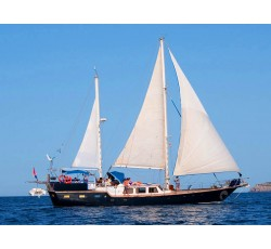 Classic sailing ketch excursion
